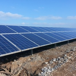 a solar site near Tenby where SQE is working as environmental consultants